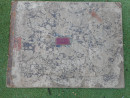 DSCN5721